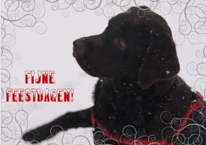 kerstwens-2010