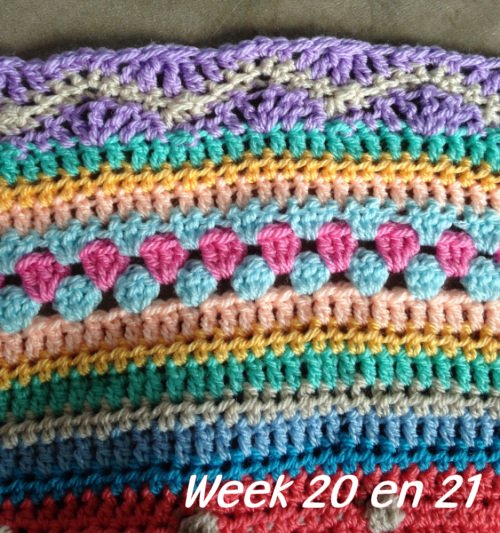 week-20-en-21